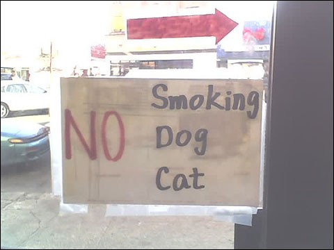 Nosmokingdogcat